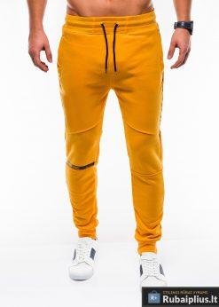 Stilingos vyriskos geltonos sportinės kelnės vyrams treningines internetu pigiau P743G priekis