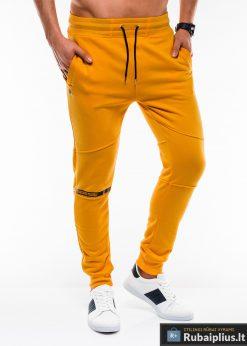 Stilingos vyriskos geltonos sportinės kelnės vyrams treningines internetu pigiau P743G dešinė