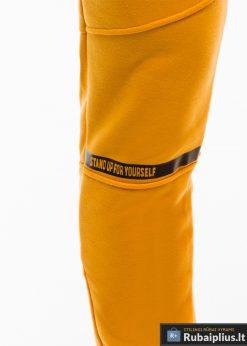 Stilingos vyriskos geltonos sportinÄ—s kelnÄ—s vyrams treningines internetu pigiau P743G priekis koja