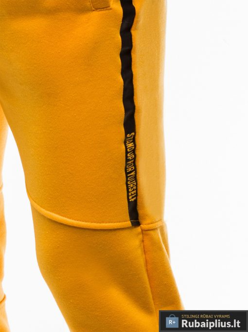 Stilingos vyriskos geltonos sportinės kelnės vyrams treningines internetu pigiau P743G šonas