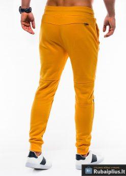 Stilingos vyriskos geltonos sportinÄ—s kelnÄ—s vyrams treningines internetu pigiau P743G nugara