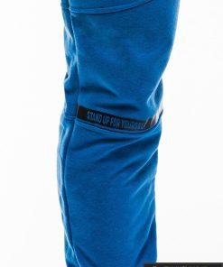 Stilingos vyriskos mėlynos sportinės kelnės vyrams treningines internetu pigiau P743M priekis koja