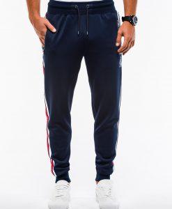 Vyriškos sportinės kelnės internetu pigiau P854+B975 13852-5